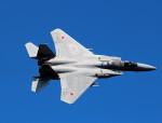NEMO11223300さんが、三沢飛行場で撮影した航空自衛隊 F-15J Eagleの航空フォト(写真)