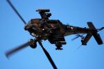 NEMO11223300さんが、浜松基地で撮影した陸上自衛隊 AH-64Dの航空フォト(写真)