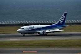 tsubasa0624さんが、中部国際空港で撮影した全日空 737-54Kの航空フォト(飛行機 写真・画像)