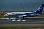 tsubasa0624さんが、中部国際空港で撮影した全日空 737-781の航空フォト(写真)