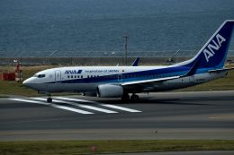 tsubasa0624さんが、中部国際空港で撮影した全日空 737-781の航空フォト(飛行機 写真・画像)