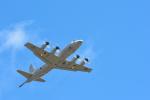 パンダさんが、茨城空港で撮影した海上自衛隊 P-3Cの航空フォト(写真)