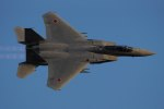 Valentinoさんが、茨城空港で撮影した航空自衛隊 F-15J Eagleの航空フォト(写真)
