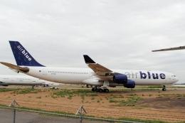 ZONOさんが、フェニックス・グッドイヤー空港で撮影したエア・ブルー A340-313の航空フォト(飛行機 写真・画像)