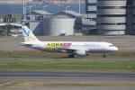 SKYLINEさんが、羽田空港で撮影したバニラエア A320-211の航空フォト(写真)