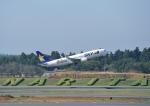 成田国際空港 - Narita International Airport [NRT/RJAA]で撮影されたスカイマーク - Skymark Airlines [BC/SKY]の航空機写真