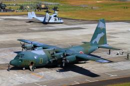yuuka no kazeさんが、南紀白浜空港で撮影した航空自衛隊 C-130H Herculesの航空フォト(飛行機 写真・画像)