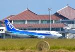 nyukioさんが、宮古空港で撮影した全日空 737-281の航空フォト(写真)