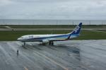 tupolevさんが、稚内空港で撮影した全日空 737-881の航空フォト(写真)