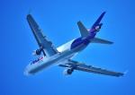 mojioさんが、関西国際空港で撮影したフェデックス・エクスプレス MD-11Fの航空フォト(飛行機 写真・画像)