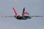 フジコンさんが、厚木飛行場で撮影したアメリカ海軍 F/A-18F Super Hornetの航空フォト(写真)