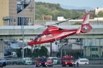 T.Sazenさんが、伊丹空港で撮影した大阪市消防航空隊 AS365N3 Dauphin 2の航空フォト(飛行機 写真・画像)