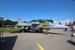 Koenig117さんが、ミリテール・ド・ペイエルヌ飛行場で撮影したハンガリー空軍 JAS39Cの航空フォト(写真)