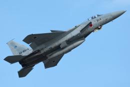 ヒットさんが、入間飛行場で撮影した航空自衛隊 F-15J Eagleの航空フォト(飛行機 写真・画像)