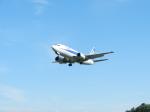 あお♪さんが、伊丹空港で撮影した全日空 737-281の航空フォト(写真)