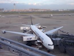 AIR JAPONさんが、羽田空港で撮影したシンガポール航空 777-212/ERの航空フォト(飛行機 写真・画像)
