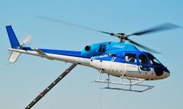 Soraya_Projectさんが、東京ヘリポートで撮影したエクセル航空 AS355N Ecureuil 2の航空フォト(飛行機 写真・画像)