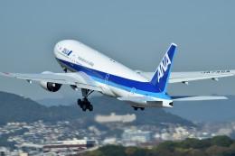 tsubasa0624さんが、伊丹空港で撮影した全日空 777-281/ERの航空フォト(飛行機 写真・画像)