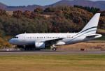 Dojalanaさんが、函館空港で撮影したヤーリアン・ビジネスジェット A318-112 CJ Eliteの航空フォト(写真)