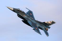 take_2014さんが、入間飛行場で撮影した航空自衛隊 F-2Aの航空フォト(写真)