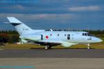 Chofu Spotter Ariaさんが、入間飛行場で撮影した航空自衛隊 U-125A(Hawker 800)の航空フォト(写真)
