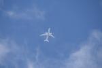 wata88さんが、入間飛行場で撮影した全日空 787-8 Dreamlinerの航空フォト(写真)