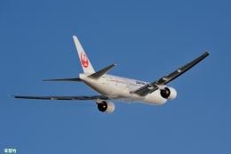 妄想竹さんが、那覇空港で撮影した日本航空 777-246の航空フォト(飛行機 写真・画像)