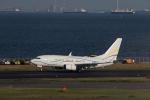 くるくもるさんが、羽田空港で撮影したSASインスティチュート 737-7BC BBJの航空フォト(写真)