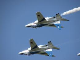 空の旅人さんが、築城基地で撮影した航空自衛隊 T-4の航空フォト(飛行機 写真・画像)