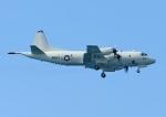 じーく。さんが、嘉手納飛行場で撮影したアメリカ海軍 P-3C AIPの航空フォト(写真)