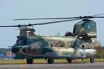 パンダさんが、入間飛行場で撮影した航空自衛隊 CH-47J/LRの航空フォト(写真)