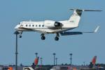 パンダさんが、成田国際空港で撮影した国土交通省 航空局 G-IV Gulfstream IV-SPの航空フォト(写真)
