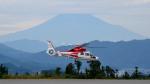 mojioさんが、静岡空港で撮影した横浜市消防航空隊 AS365N2 Dauphin 2の航空フォト(飛行機 写真・画像)