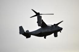 Boeing 787-981さんが、霞目駐屯地で撮影したアメリカ海兵隊 MV-22Bの航空フォト(飛行機 写真・画像)
