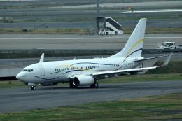 tsubasa0624さんが、羽田空港で撮影したSASインスティチュート 737-7BC BBJの航空フォト(飛行機 写真・画像)