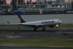 アイスコーヒーさんが、羽田空港で撮影したスカイマーク A330-343Xの航空フォト(飛行機 写真・画像)