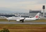 mojioさんが、伊丹空港で撮影した日本航空 737-846の航空フォト(飛行機 写真・画像)