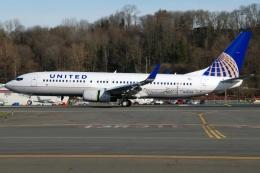 あちゃそぺさんが、ボーイングフィールドで撮影したユナイテッド航空 737-824の航空フォト(飛行機 写真・画像)
