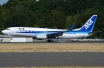 あちゃそぺさんが、ボーイングフィールドで撮影した全日空 737-881の航空フォト(写真)