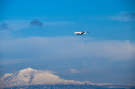 パンダさんが、旭川空港で撮影した全日空 737-781の航空フォト(写真)