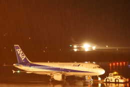 kij niigataさんが、新潟空港で撮影した全日空 A320-211の航空フォト(飛行機 写真・画像)