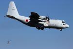 NEMO11223300さんが、厚木飛行場で撮影した海上自衛隊 C-130Rの航空フォト(写真)