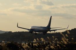 Hidekiさんが、岡山空港で撮影した全日空 737-881の航空フォト(飛行機 写真・画像)