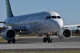 tsubasa0624さんが、茨城空港で撮影した春秋航空 A320-214の航空フォト(飛行機 写真・画像)