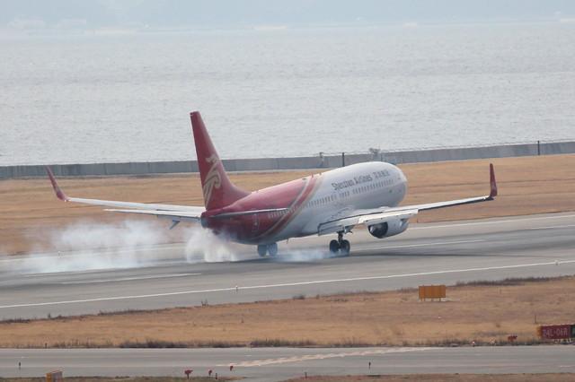 takepapaさんが、関西国際空港で撮影した深圳航空 737-87Lの航空フォト(飛行機 写真・画像)
