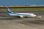 アイスコーヒーさんが、羽田空港で撮影した全日空 737-881の航空フォト(写真)