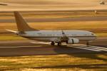 アイスコーヒーさんが、羽田空港で撮影した南山公務 737-7ZH BBJの航空フォト(写真)