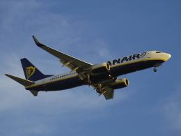 Dizzyさんが、ファロ空港で撮影したライアンエア 737-8ASの航空フォト(飛行機 写真・画像)