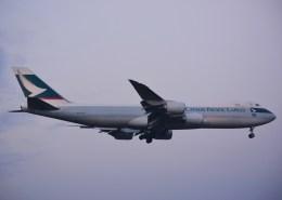 tsukatakuさんが、成田国際空港で撮影したキャセイパシフィック航空 747-867F/SCDの航空フォト(飛行機 写真・画像)