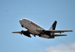 todotaさんが、ダニエル・K・イノウエ国際空港で撮影したアロハ・エア・カーゴ 737-290C/Advの航空フォト(飛行機 写真・画像)